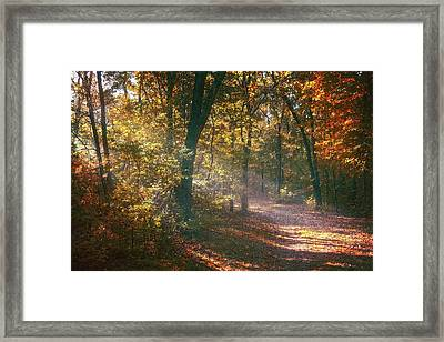 Autumn Path Framed Print by Scott Norris