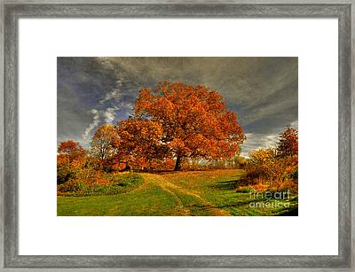 Autumn Picnic On The Hill Framed Print by Lois Bryan