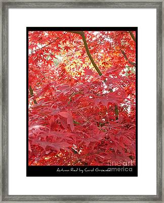 Autumn Red Poster Framed Print by Carol Groenen