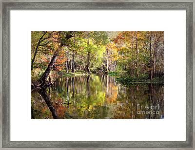 Autumn Reflection On Florida River Framed Print by Carol Groenen