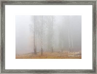 Autumn Reveals Framed Print by Mike  Dawson
