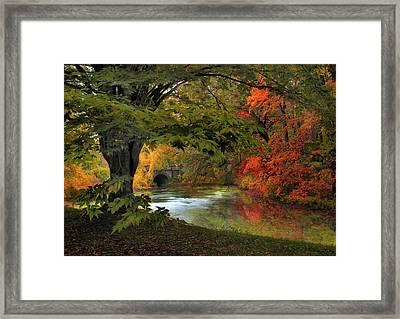Autumn Reverie Framed Print by Jessica Jenney