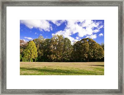 Autumn Skies Framed Print by Bill Cannon