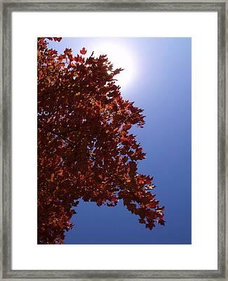 Autumn Sky I Framed Print by Anna Villarreal Garbis