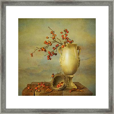 Autumn Still Life Framed Print by Theresa Tahara