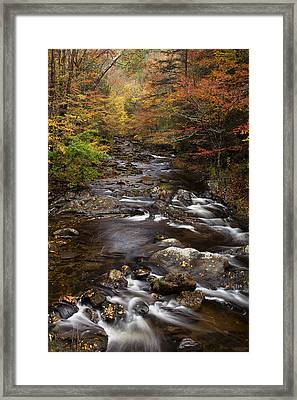 Autumn Stream Framed Print by Andrew Soundarajan