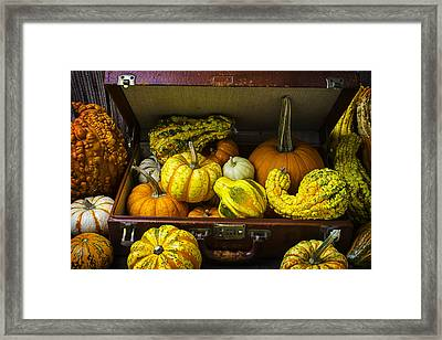 Autumn Suitcase Framed Print by Garry Gay