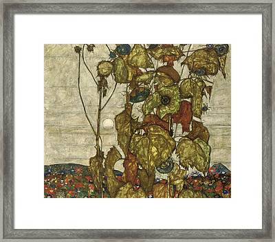 Autumn Sun Framed Print by Egon Schiele
