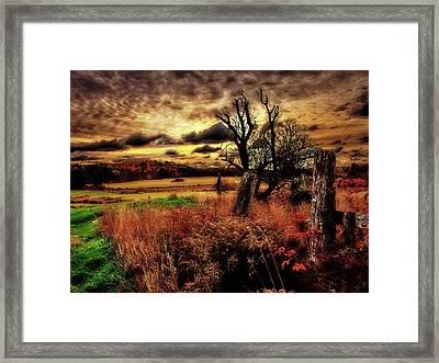 Autumn Sunlight Framed Print by Bob Orsillo