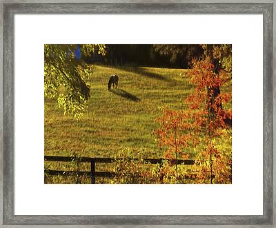 Autumn Sunset Shadows Framed Print by Bellesouth Studio