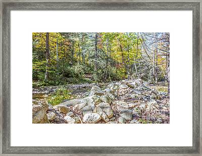 Autumn Trail Framed Print by A New Focus Photography