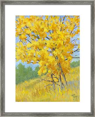 Autumn Tree Framed Print by David King
