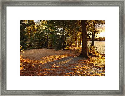 Autumn Trees Near Lake Framed Print by Elena Elisseeva