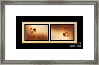 Autumn Up And Down Framed Print by Kaye Menner