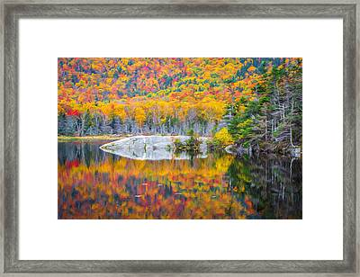 Autumn Vibrance Framed Print by Black Brook Photography
