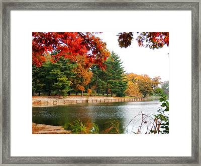 Autumn View Framed Print by Teresa Schomig