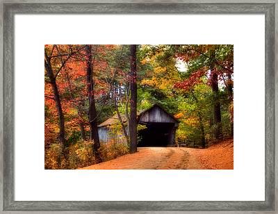 Autumn Wonder Framed Print by Joann Vitali