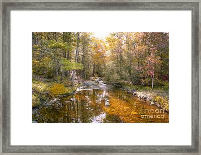 Autumn's Blessings Framed Print by A New Focus Photography
