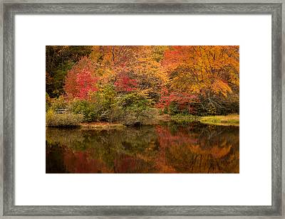 Autumns Colorful Reflection North Carolina Framed Print by Terry DeLuco