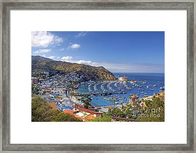 Avalon Framed Print by Eddie Yerkish