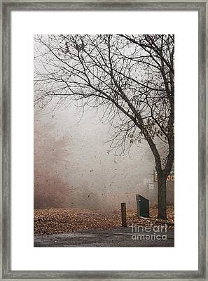 Avant Les Flocons - 1bt1 Framed Print by Variance Collections