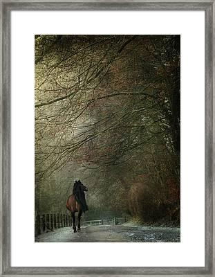 Avenue Walk Framed Print by Dorota Kudyba