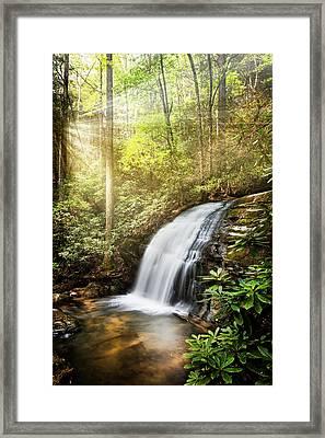 Awakening In The Forest Framed Print by Debra and Dave Vanderlaan