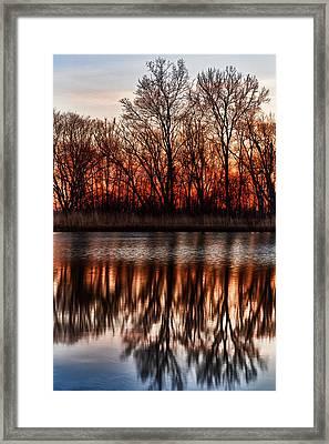 Awakening Framed Print by James Marvin Phelps