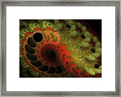 Awed Framed Print by Bonnie Bruno