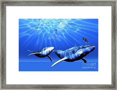 Awesome Framed Print by Corey Ford