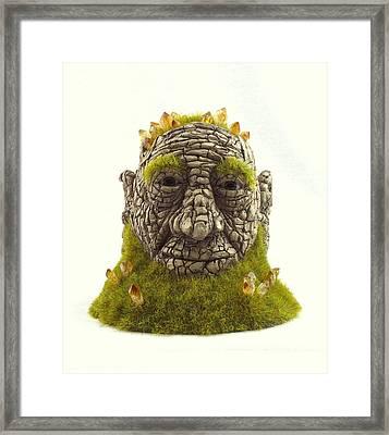 Awoken Framed Print by Przemyslaw Stanuch