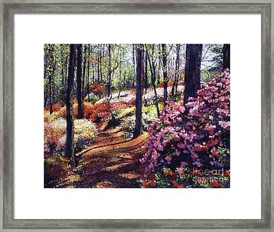 Azalea Forest Framed Print by David Lloyd Glover