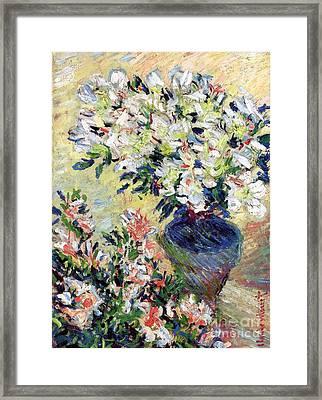 Azaleas Framed Print by Claude Monet