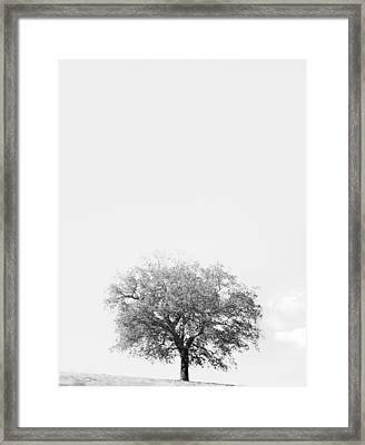 Azygous Framed Print by Joseph Smith