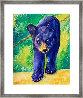 Baby Black Bear Framed Print by Caitlin  Lodato