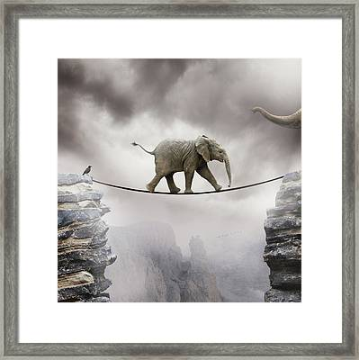Baby Elephant Framed Print by by Sigi Kolbe