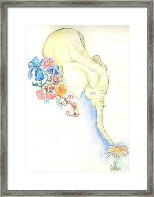 Baby Elephant Framed Print by Cherie Sexsmith