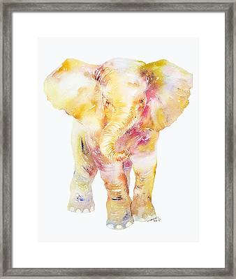 Baby Ellie Framed Print by Arti Chauhan