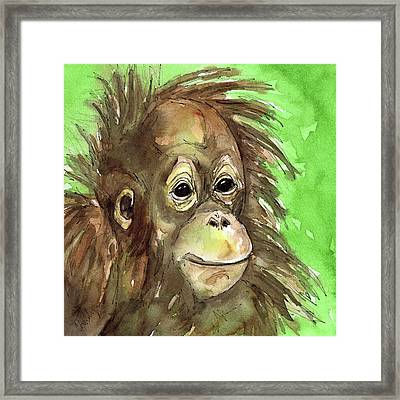 Baby Orangutan Wildlife Painting Framed Print by Cherilynn Wood