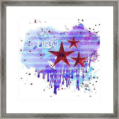 Back In The Usa Framed Print by Colleen Taylor