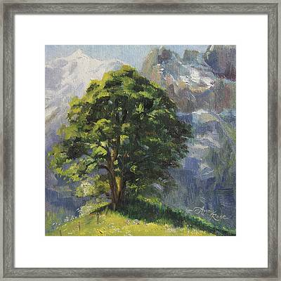 Backdrop Of Grandeur Plein Air Study Framed Print by Anna Rose Bain