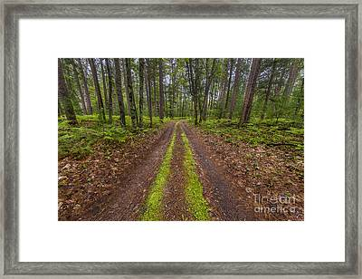 Backroad In Sleeping Bear Dunes Framed Print by Twenty Two North Photography