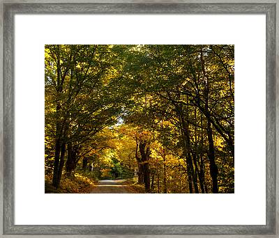 Backroads Of New England Framed Print by Sue OConnor