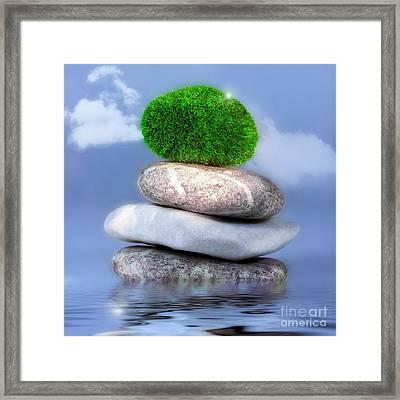 Balance Framed Print by VIAINA Visual Artist
