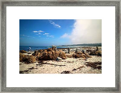 Balanced Beach 2 Framed Print by Joyce Dickens
