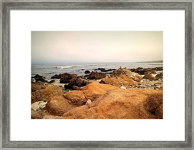 Balanced Beach 3 Framed Print by Joyce Dickens