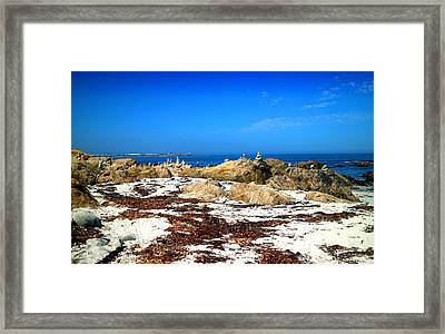 Balanced Beach Framed Print by Joyce Dickens