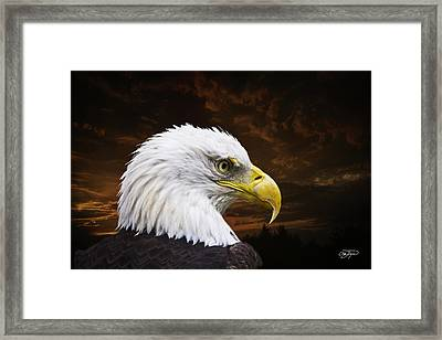 Bald Eagle - Freedom And Hope - Artist Cris Hayes Framed Print by Cris Hayes