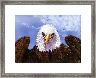 Bald Eagle Framed Print by Catherine G McElroy