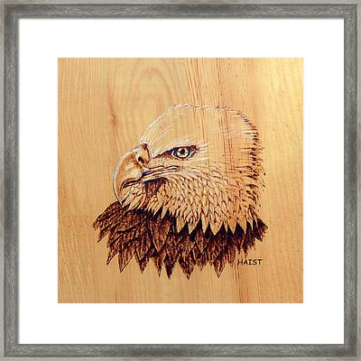 Bald Eagle Pillow/bag Framed Print by Ron Haist